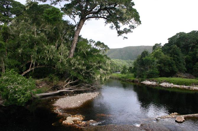 Groot river ~ Knysna blog